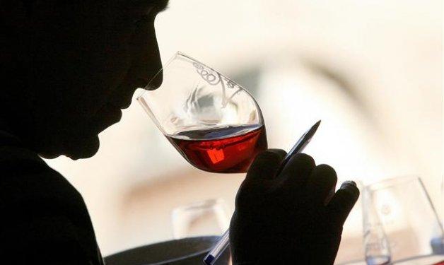 Aprende a disfrutar del buen vino (Parte 2): la importancia del correcto vocabulario