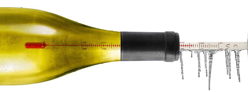 Aprende a disfrutar del buen vino (Parte 3): esmerate con la temperatura ideal