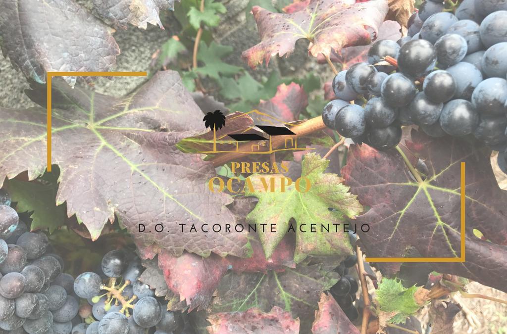 Expectativas para los vinos Bodegas Presas Ocampo 2017